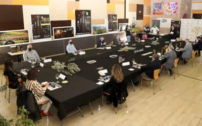 'AOVE Magallón' presenta su última cosecha 2020 en una cata retransmitida online
